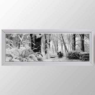 Kış Ormanı görseli.