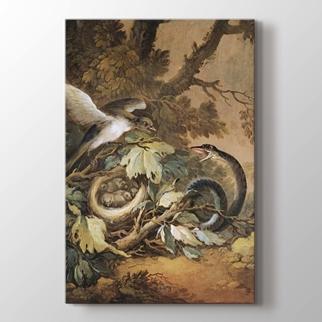 Yılan ve Kuş Yuvası görseli.