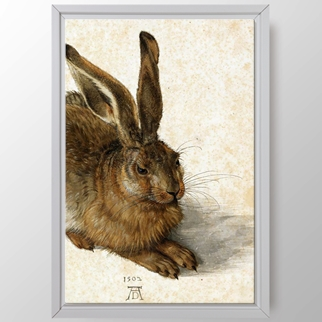 Tavşan görseli.