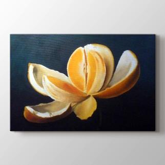 Portakal görseli.
