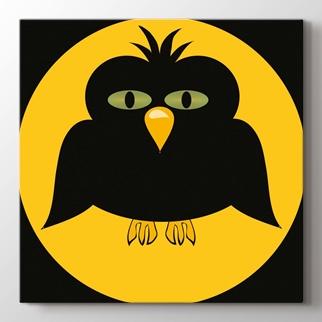 Siyah Baykuş görseli.