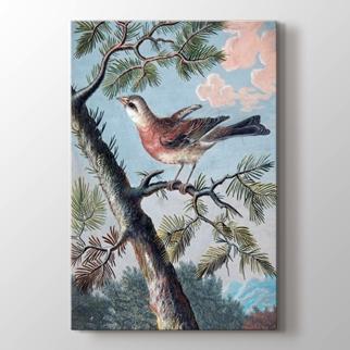 Ağaç ve Kuş görseli.