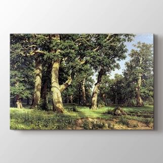 Ağaçlar görseli.