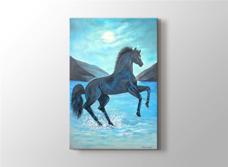 Ayışığı Siyah At