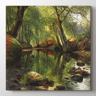Orman Kanalı  görseli.