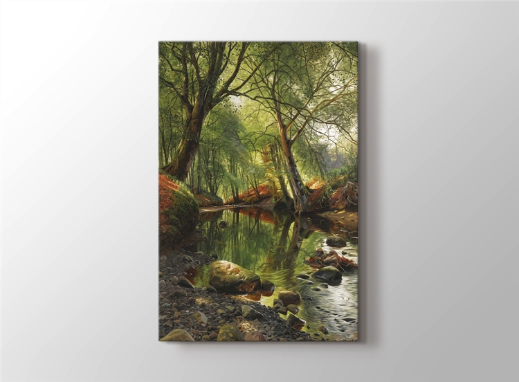 Orman Kanalı