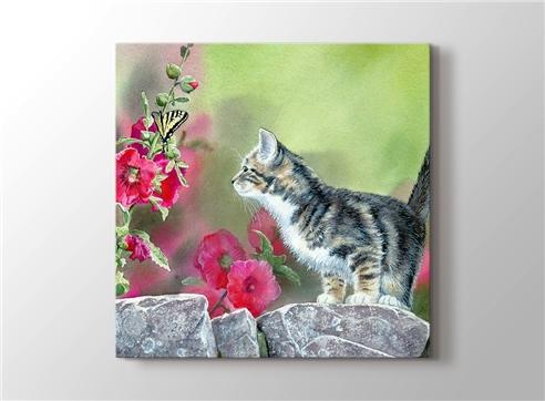 Kedi görseli