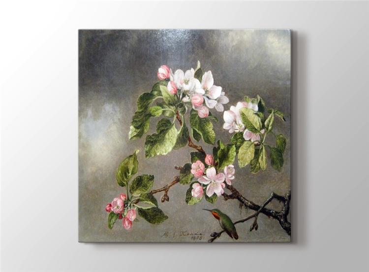 Elma Çiçekleri