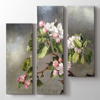 Elma Çiçekleri görseli.