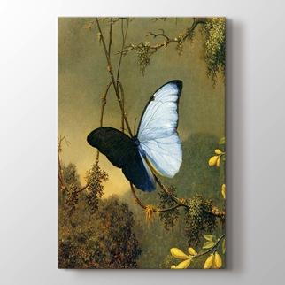 Mavi Kelebek görseli.