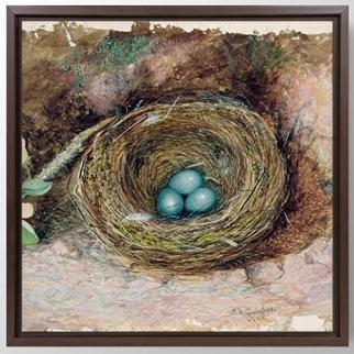 Bird Nest görseli.