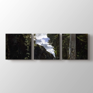 Fontainebleau Ormanı Yolu görseli.