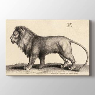 Aslan Çizimi görseli.