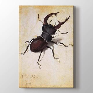 Karınca görseli.