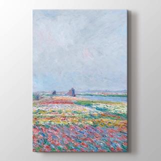 Tulip Fields Near The Hague görseli.