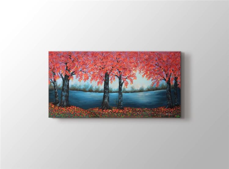 Sonbaharda Ağaçlar